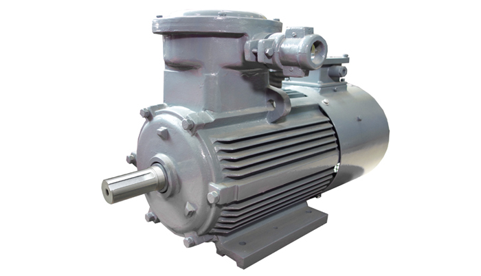 Wannan motor ybbp series flameproof type variable for Variable frequency control of induction motor