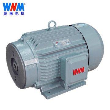 皖南电机_YH2系列高转差率三相异步电动机