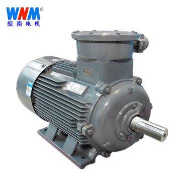 皖南电机_YBX3系列高效率隔爆型三相异步电动机