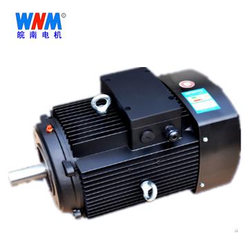 皖南电机_YE3/YX3-71~132铝机座多级泵系列电机